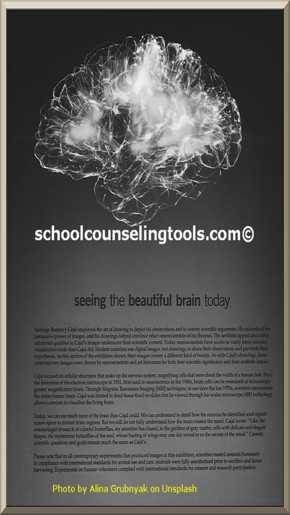 """brain"" | schoolcounselingtools"""